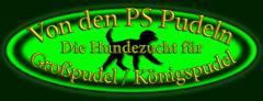 Vondenpspudeln – Großpudel Königspudel Welpen